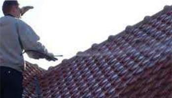 Nettoyage toiture Bas Rhin (67)